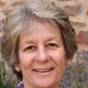 Susan Holtzapple